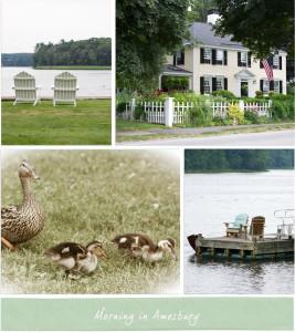 A Saturday in Amesbury / Salisbury – Ducks, Herbs and The Beach