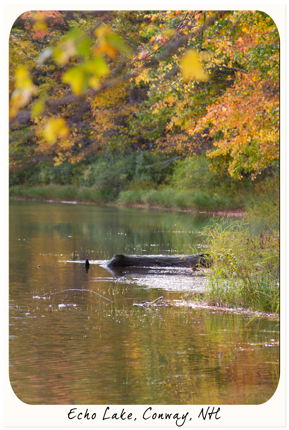 Echo Lake, Conway, NH
