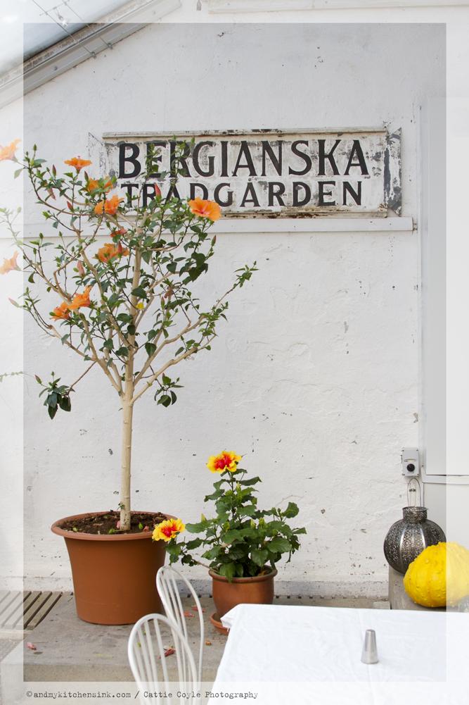 Bergianska botanical garden