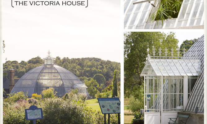 Stockholm Favorites: Bergianska Botanical Garden