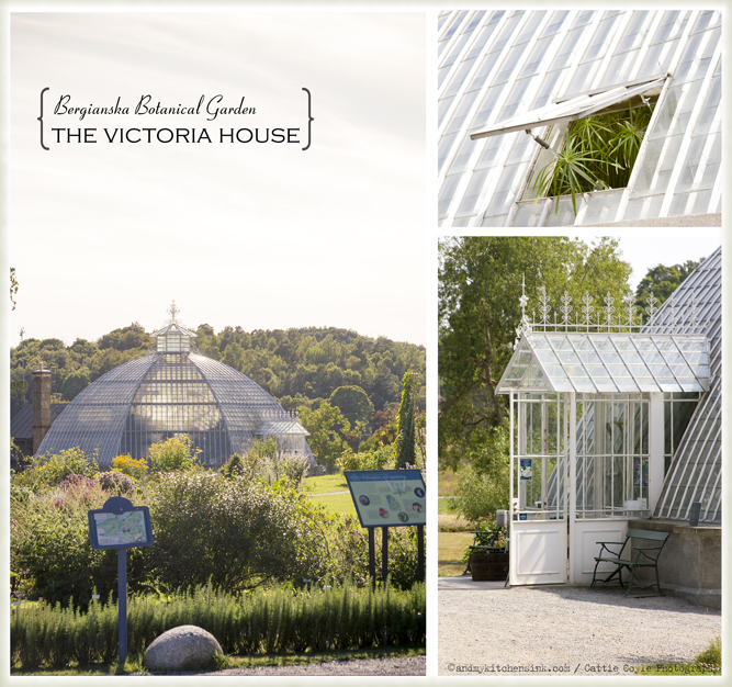 Bergianska botanical garden - the Victoria house
