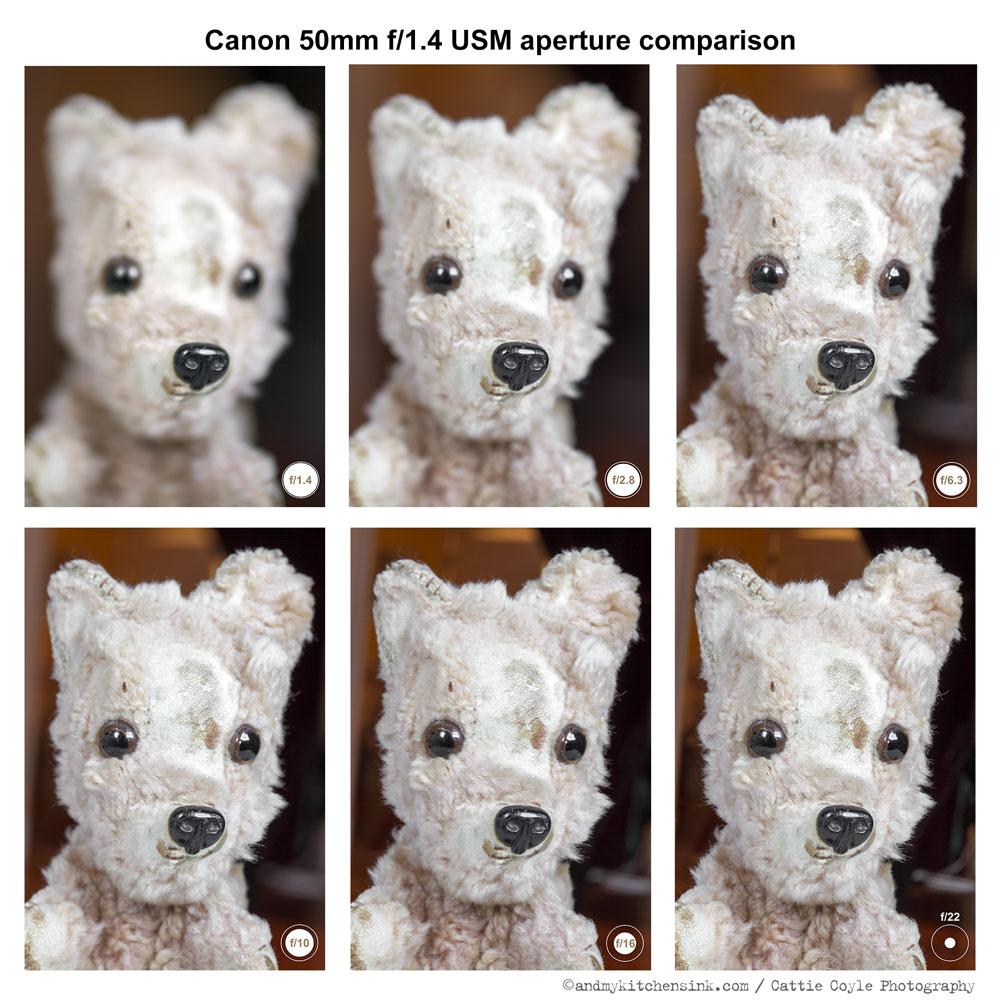 lens comparison essay