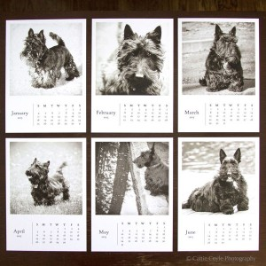 Scottie-dog-calendar-Jan-June