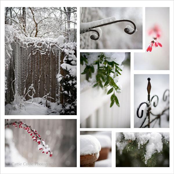 Somerville-snow