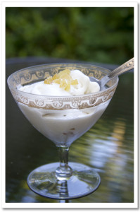 Ginger Coconut Milk Ice Cream