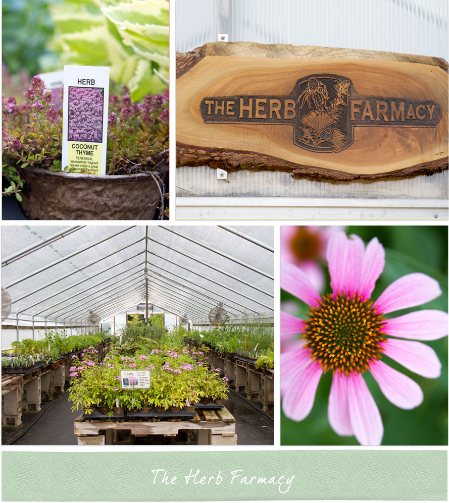 The Herb Farmacy