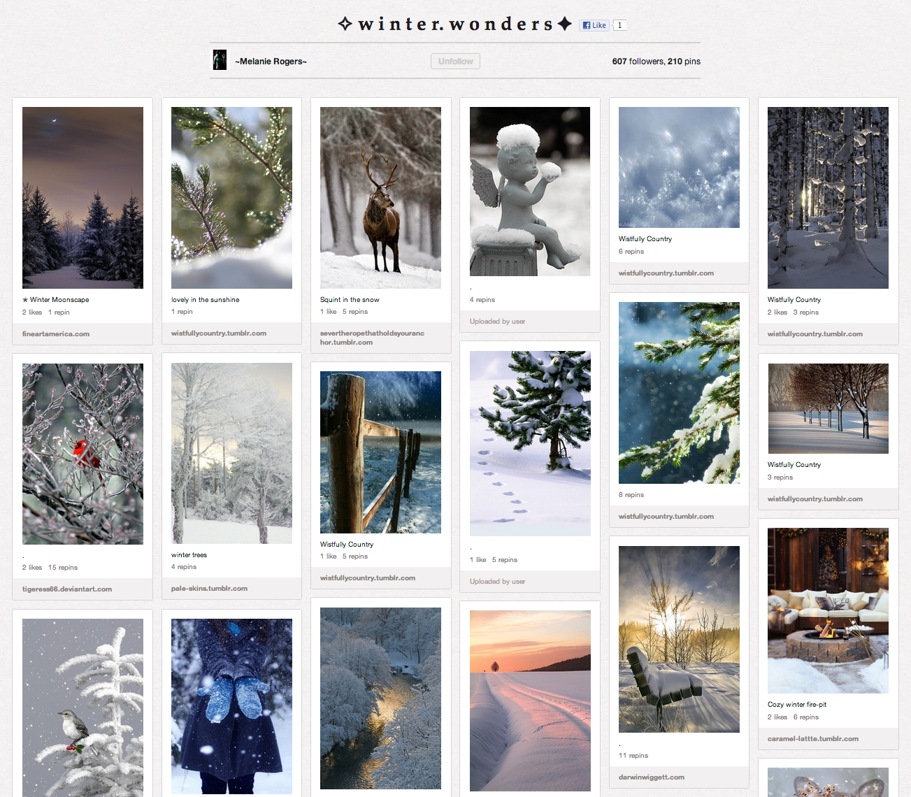 winter wonders