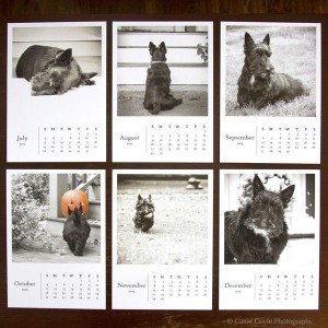 Scottie-dog-calendar-Aug-Dec
